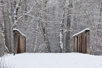 Winter Bridge after a Fresh Snowfall