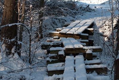 Wooden Walkway - 5