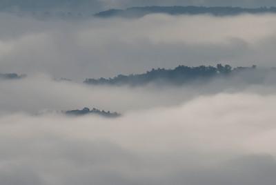 The Fog Below