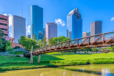 Downtown Houston. Hard to believe the variety of wildlife that resides within 100 miles of the 4th largest US city!