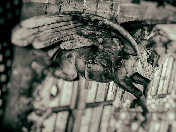 Stone wings