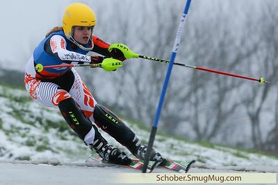 2015-01-25  Moser Cup Enschede