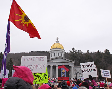 Womens March 2017 state house and flag IMG_2009