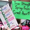 Womens March 2017 true strength Vermont IMG_1956