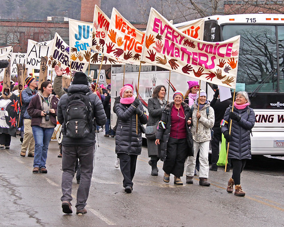 Womens March 2017 every voice matters IMG_1935