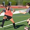 Women's Varsity Soccer - Jesuit Crusaders vs. Lincoln Cardinals