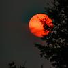 Full Moon Sun 2