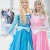 Princess Auroras