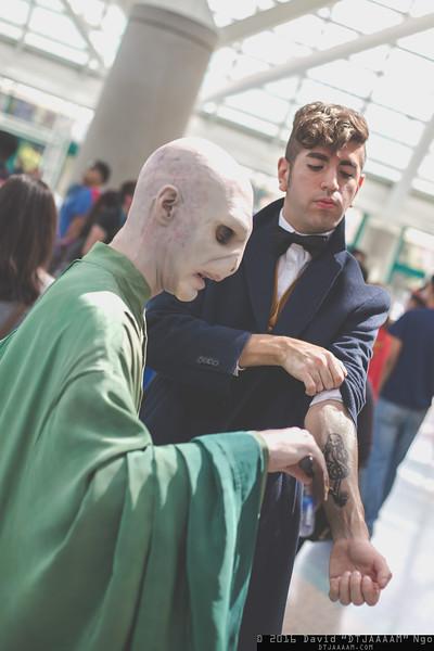 Voldemort and Newt Scamander
