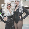 Black Cat and Black Canary