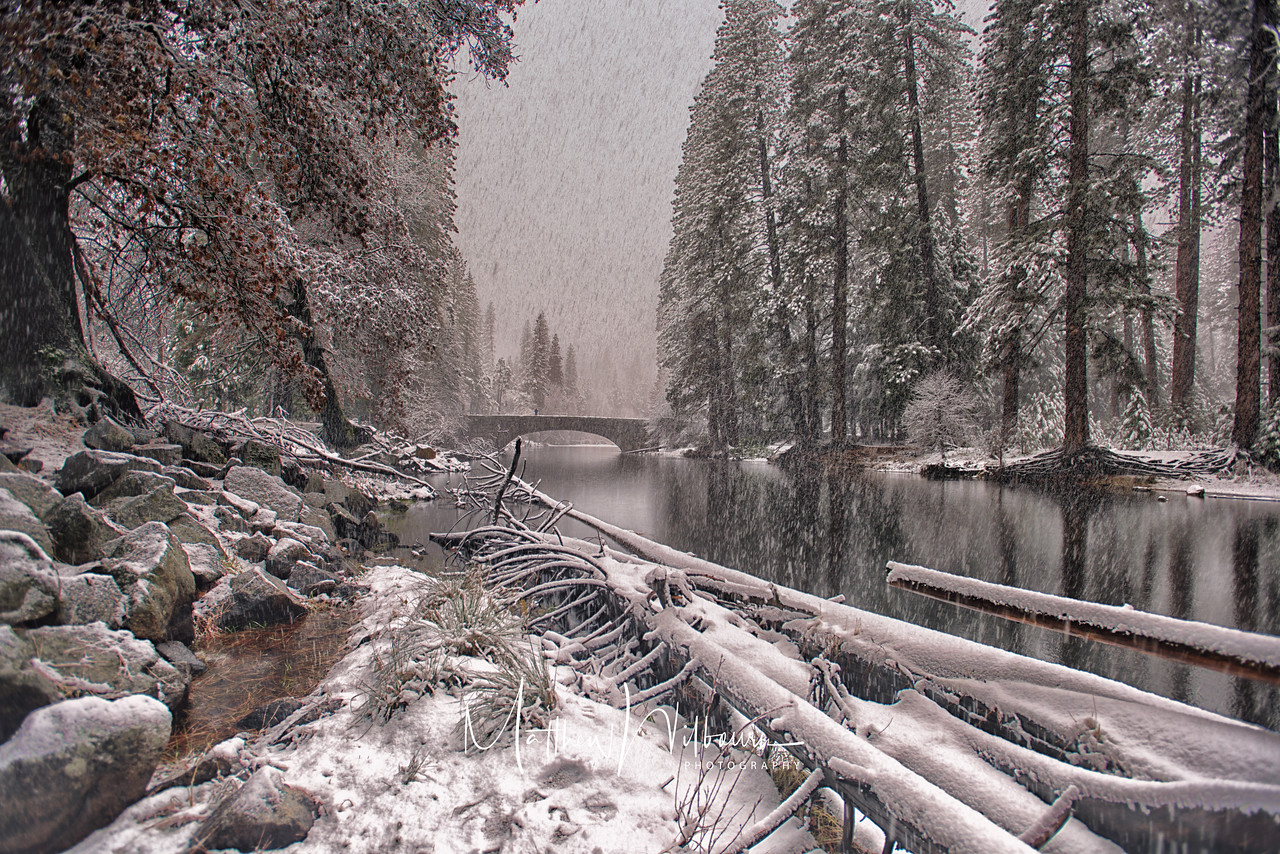 Yosemite Winter Wonderland Photography