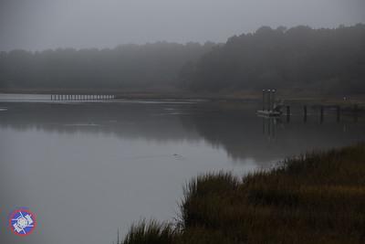 201512 - morning mist-6