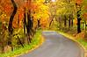 AutumnInTaylorCo ,WV-01