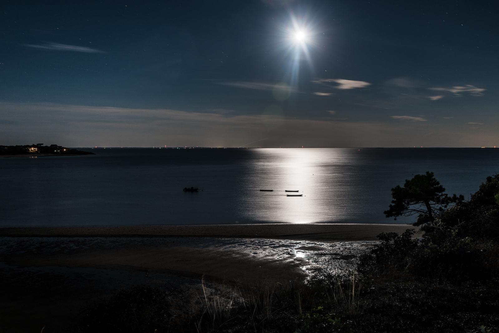 NightBoats-38.jpg