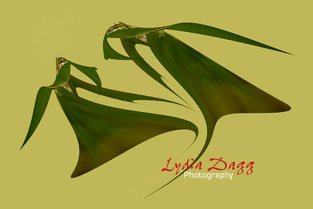 Flying Dancers, #6309