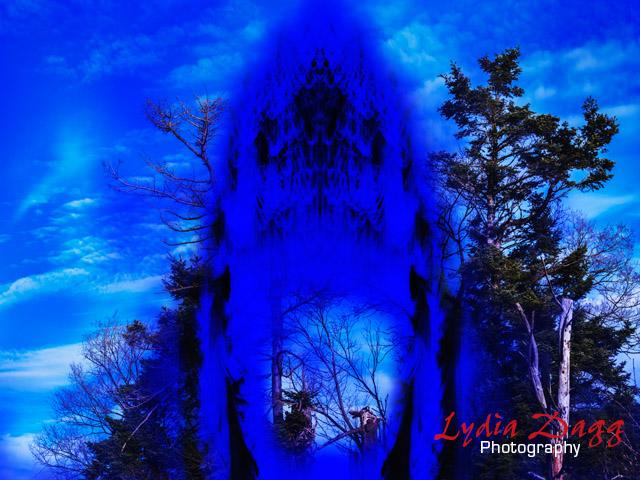 Tree Spirit, #0833