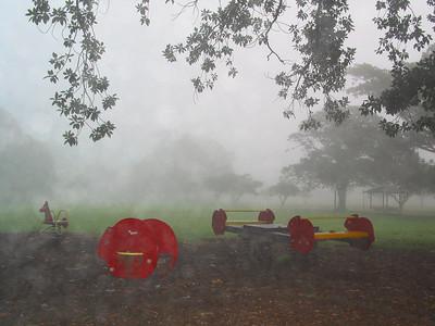 Red animals in mist, Glebe 2003