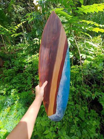 """28"""" Big IS 120 years old Japanese Cedar"""