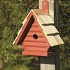 Chick 075C - Redwood