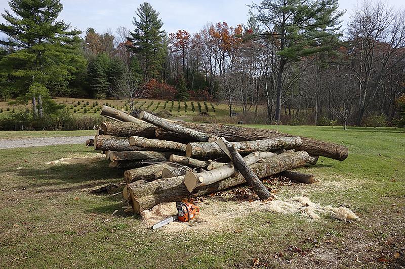 Woodpile 2