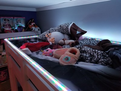 Zoes loft bed