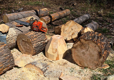 three chunks of the huge log, middle one chainsawed to rough cone shape