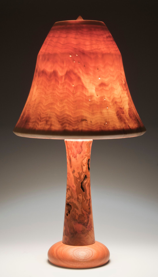 Camphor Burl and Mahogany Base with Flare Shade