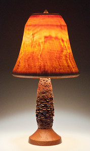 Base made out of an Australian Banksia Seed Pod, Teak Foot, Flare Shade