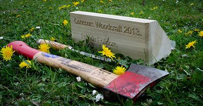 Woodcraft_130428155