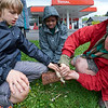 Les louveteaux en action au petit woodcraft
