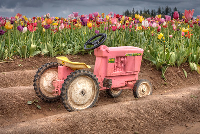 The Little Pink Tractor