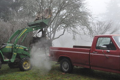 I carefully back up the truck under the bucket of the tractor.  Jan 19, 2013