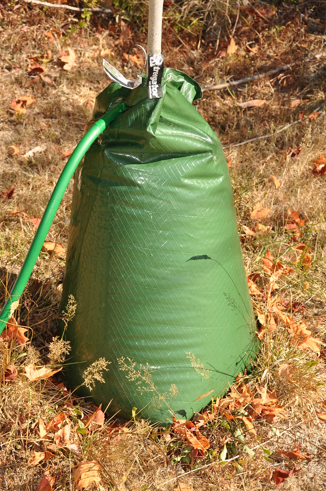 Gator Bag...  Love these things...