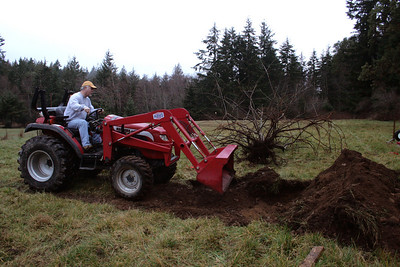 My neighbor Mike offers the service of his tractor in making a 7' X 10'  X 2' deep hole.  He then pushed all the dirt in to the hole.  This saved me hours of back breaking work.  I think I will need a tractor in the future.