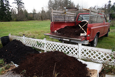 Okay, so I went and got the real good compost and mulch.  What a fun day!  I planted 5 trees that day (11/09).