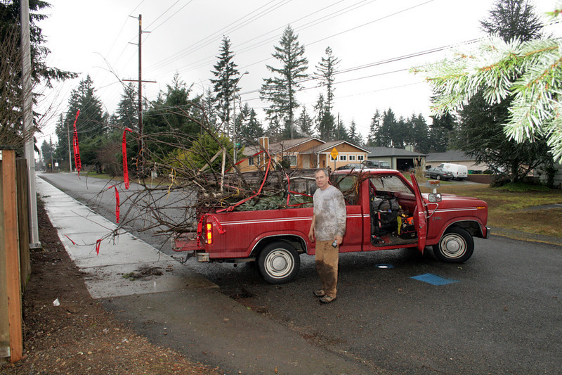Fruit Tree Rescues