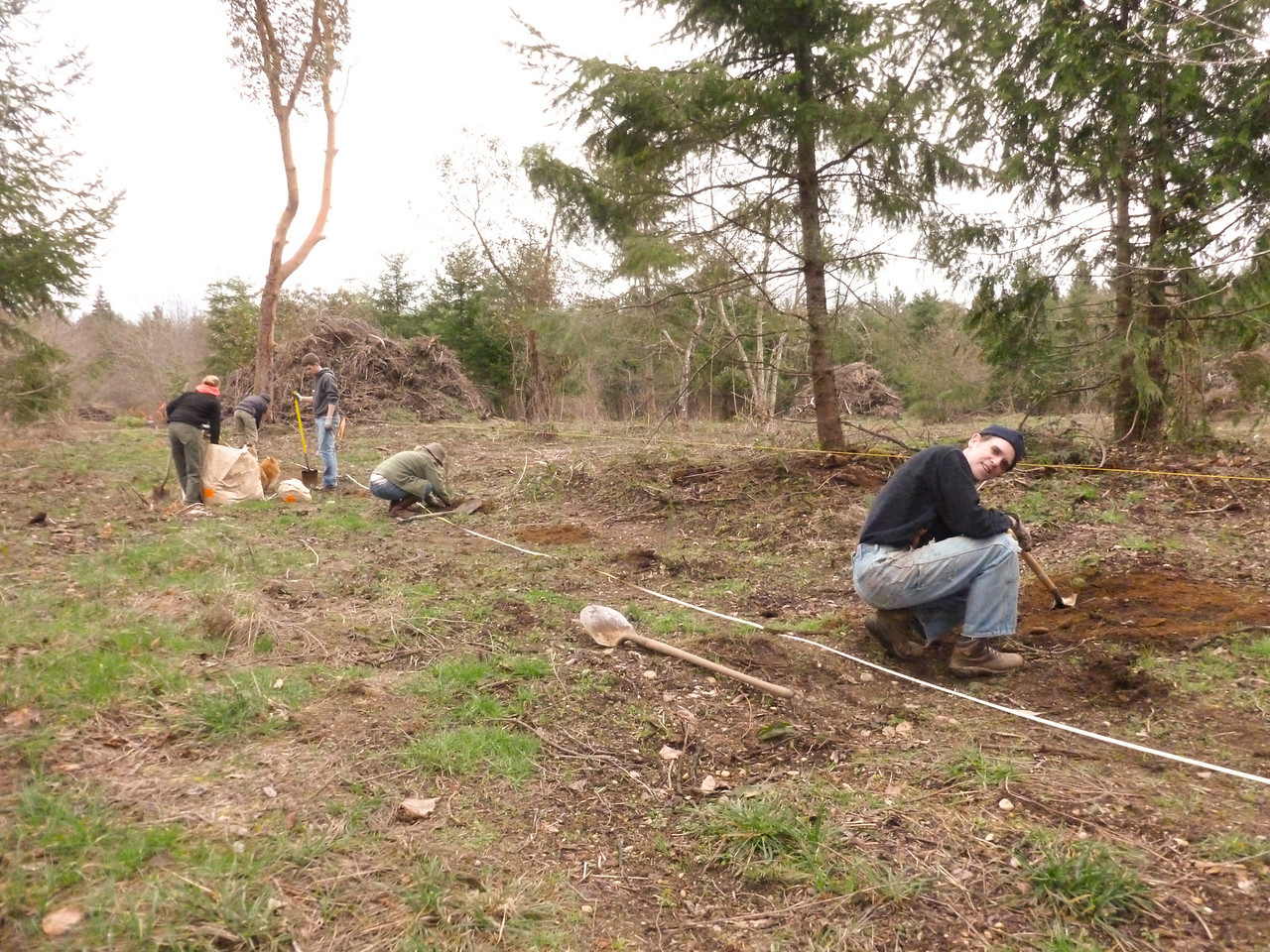 Pat planting Douglas Firs.  We layout a spread of 8' apart on the property line.  Further apart as we move into the property.  March 2, 2013