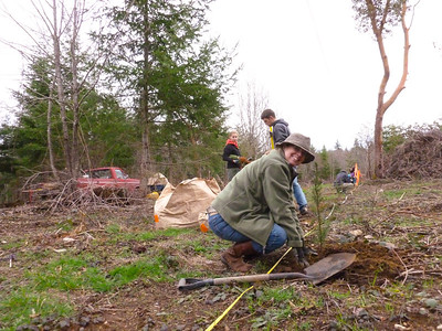 Michelle planting Douglas Firs March 2, 2013