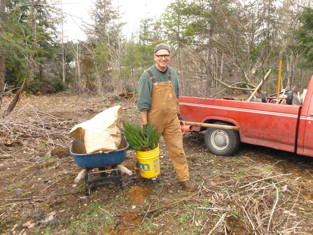 Bernie moving some Sequoia seedlings into place.  March 2 2013