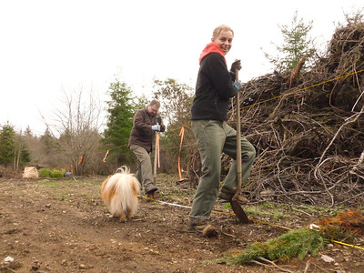 Jeri digging a hole for a Douglas Fir seedling. March 2, 2013