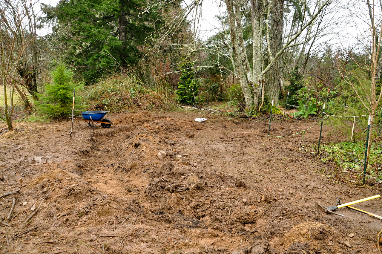 Feb 2012 More Ditch