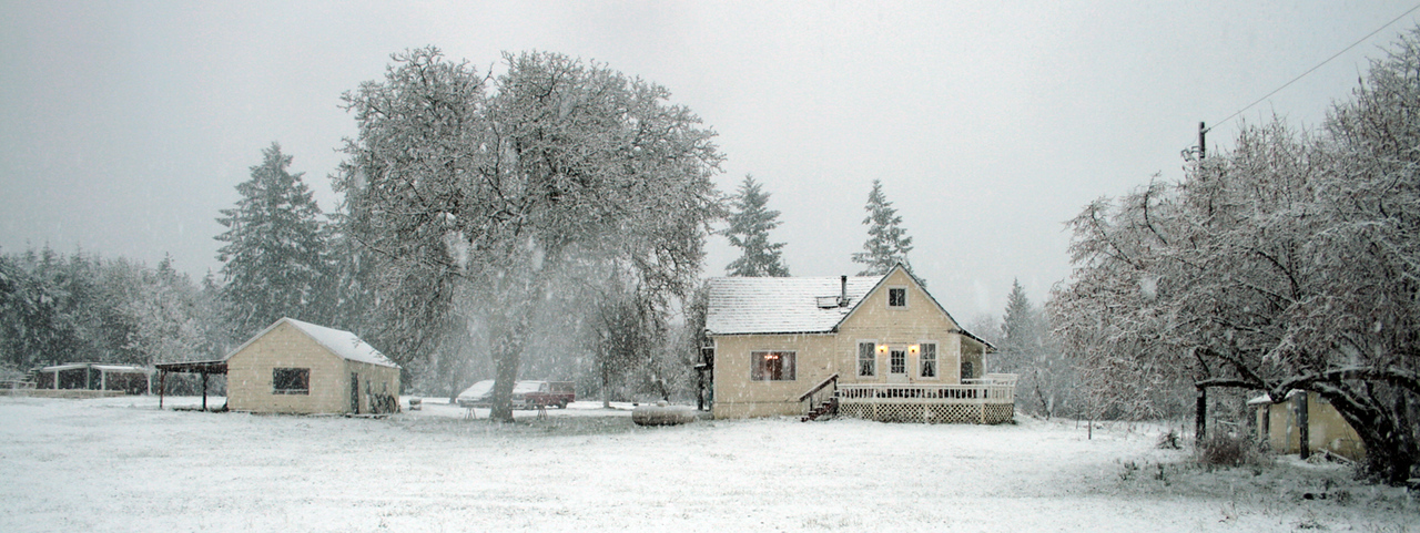 March 2009.  A late snow storm.
