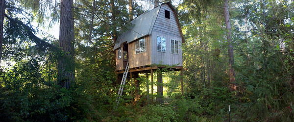 Tree House... In need of some work.  This will be a nice Glamping (Glamour Camping) area.