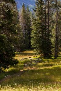 Conrad Meadows, Goat Rocks Wilderness, Cascade Range, Washington