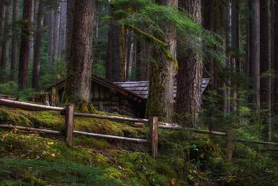 Shelter, Solduc Trail, Olympic National Park, Washington