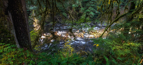 Upper Solduc River; Olympic National Park, Washington