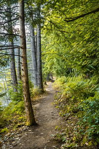 Spruce Railroad Trail, Lake Crescent, Olympic National Park