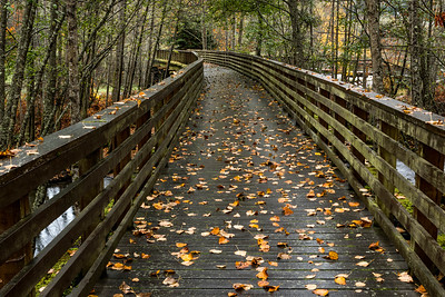 Olympic Discovery Trail near Port Angeles, Washington