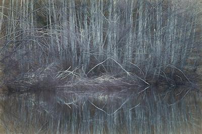"""""""Alder Impressions"""", farm pond, Eden Valley, Washington"""
