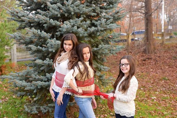 Woods 2015 Christmas